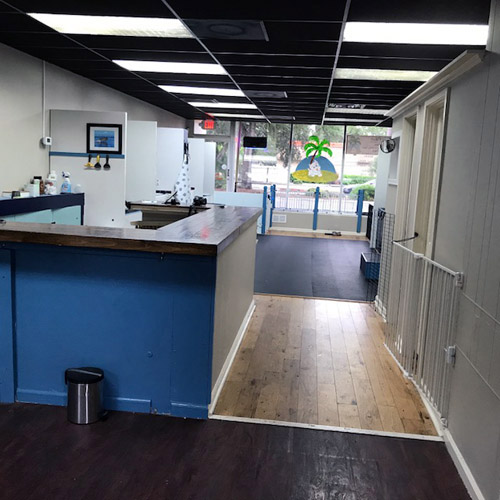 Grooming business for sale or lease fresh and new grooming salon and self serve pet wash in paradise n sarasota florida solutioingenieria Gallery