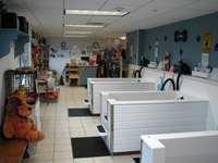 Pet grooming business for sale or lease to groomers pet grooming self serve pet wash shop reduced for quick sale solutioingenieria Gallery