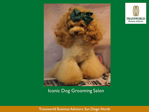 Grooming business for sale or lease iconic well established and respected dog grooming salon in affluent no county san diego dog crazy neighborhood in business for 25 years most clients solutioingenieria Image collections