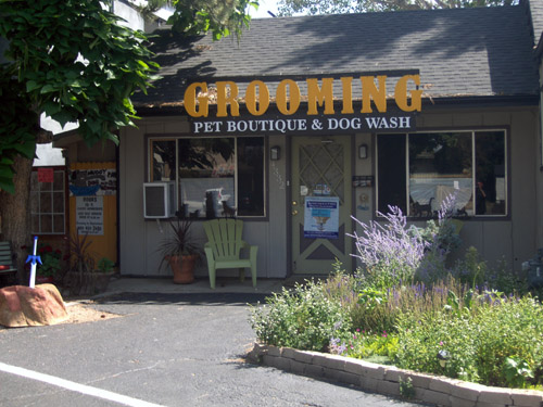 Grooming business for sale or lease business profitable since 2006 offering pet grooming self serve dog wash and a small pet store we are in high demand with our great reputation solutioingenieria Image collections