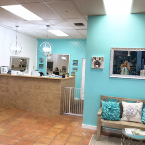 Pet grooming classified ads for dog and pet groomers and career seekers experienced dog groomer wanted for fun friendly team vero beach solutioingenieria Choice Image