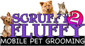 Pet grooming classified ads for dog and pet groomers and career seekers were an established mobile dog grooming company that s passionate about what we do and are currently seeking experienced and charismatic dog groomers to solutioingenieria Gallery
